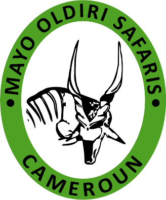 Mayo Oldiri Safaris